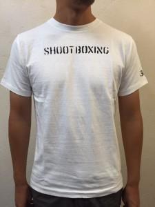 Ph02BEAMS-Tシャツ3